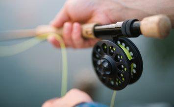 Как правильно выбрать воблер для рыбалки?