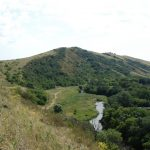 В заказнике «Донецкий кряж» пожаром уничтожено 70 гектаров сухой травы