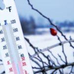 Что гидрометцентр прогнозирует на предстоящую зиму
