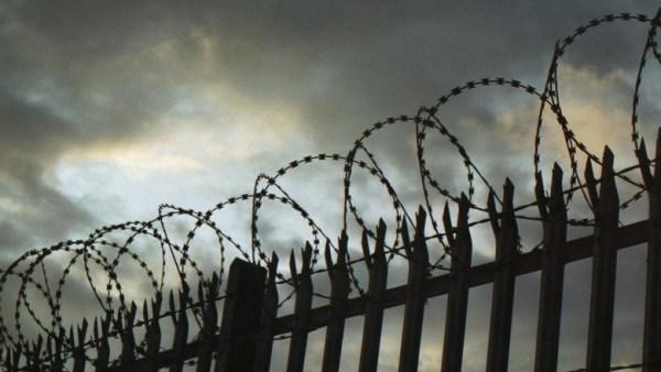 ФСИН прокомментировала фото, на которых осужденный по делу Кущевской ОПГ ест икру и крабов
