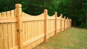 Какой забор нельзя устанавливать на границе участка с соседом