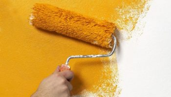 Как качественно покрасить стены, не имея малярного опыта