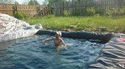 Как сделать бассейн на даче без капитальных строительных работ