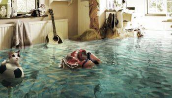 5 советов, как быстро привести квартиру в порядок после затопления соседями