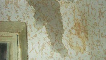 3 причины, по которым может мокреть одна из стен в квартире