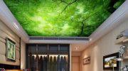 5 советов по выбору рисунка для натяжного потолка с фотопечатью