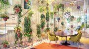 Особенности организации подсветки для растений в квартире